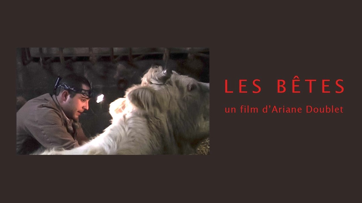 Projection LES BETES